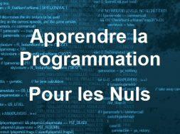 Site pour Apprendre la Programmation pour les Nuls