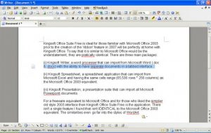 WPS Office Writer alternative word