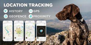 Un GPS tracker pour ne jamais perdre de vue votre chien