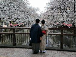 Les meilleures applications gratuites pour apprendre le japonais