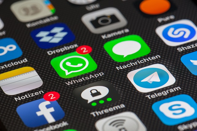 usage des réseaux sociaux en France