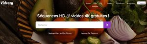 Videezy sites leaders en vidéo libre de droits