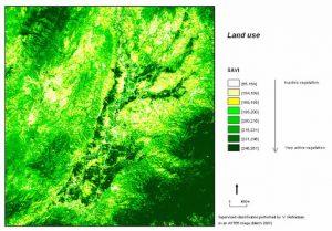 SavGIS logiciels systèmes information géographique