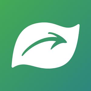 Seek application pour identifier les plantes