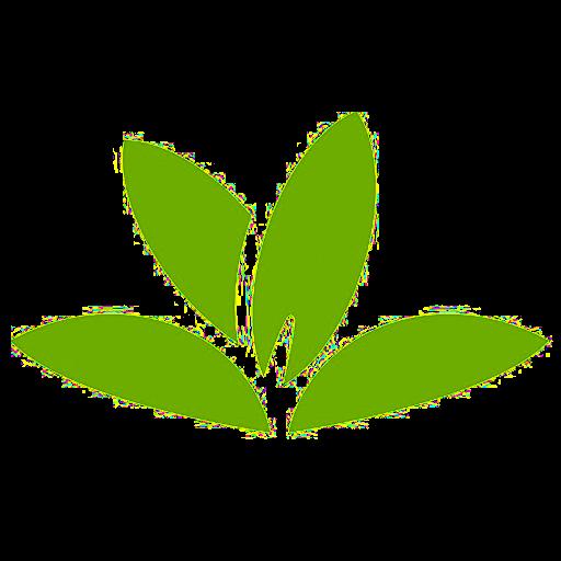 PlantNet application pour soigner les plantes