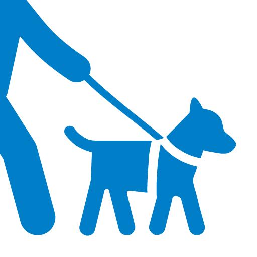 Dog Walk application pour promener des chiens
