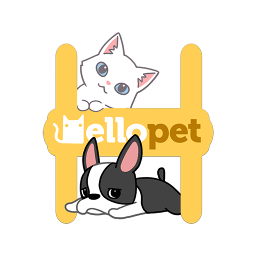 Hellopet application animaux