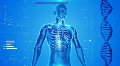 logiciels anatomie humaine